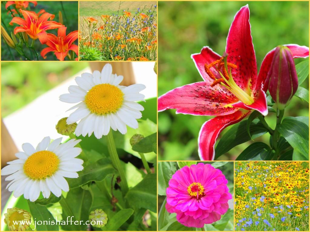 flowercollageblog