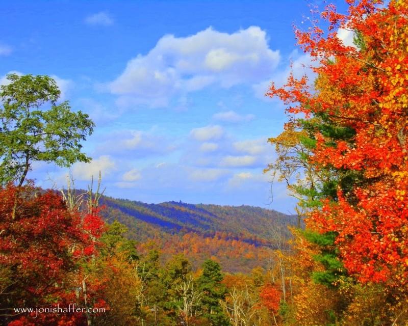 autumnleavesmountainsblog