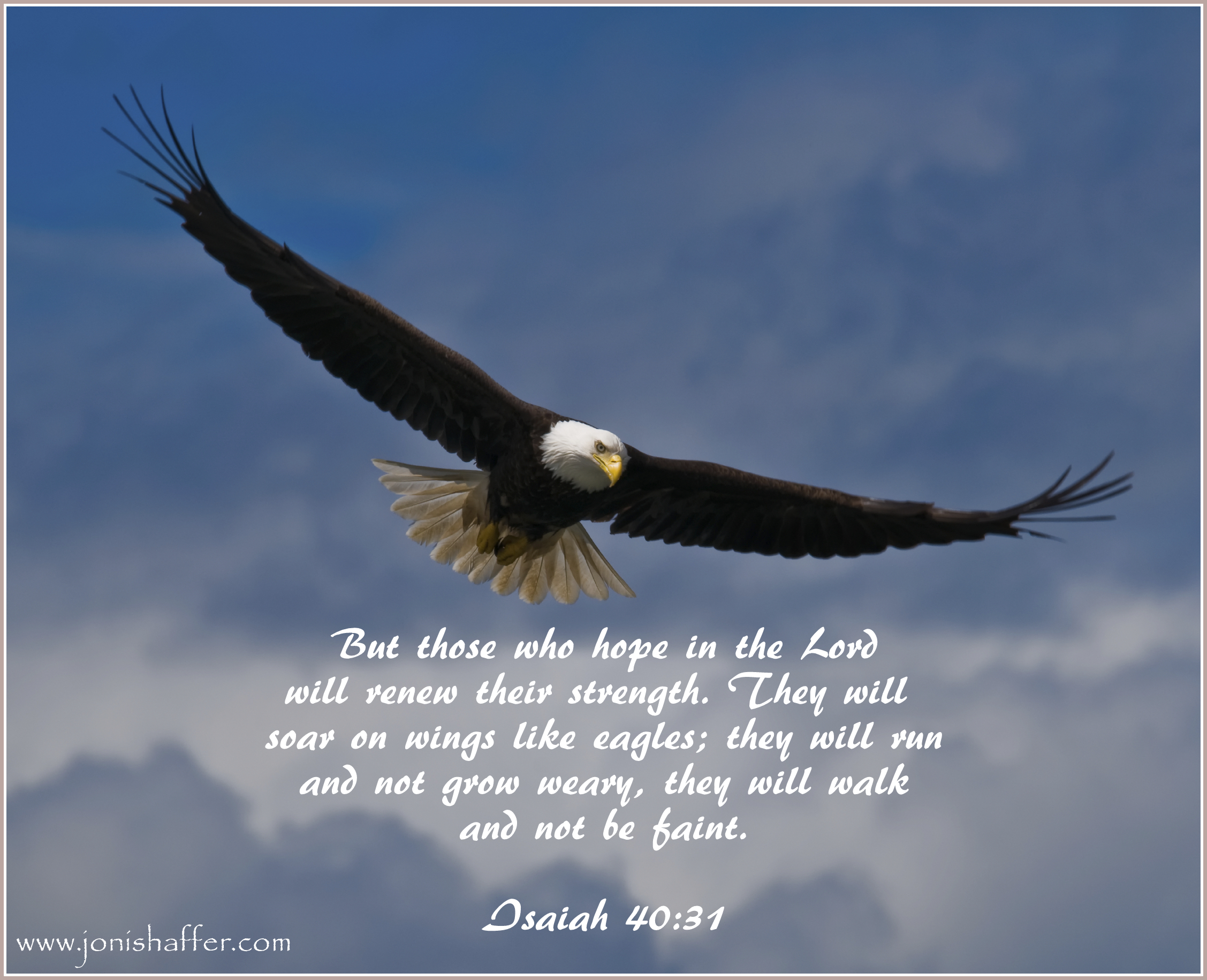 1 Poems About Eagles This Is A Collection Of Old And New That Have Been Written Some You May Recognize